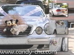 平治BENZ車-結婚花車-接送租車服務-WEDDING CAR